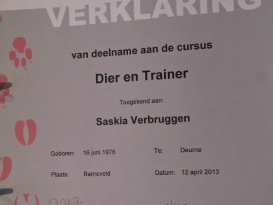certificaat-dier-en-trainer